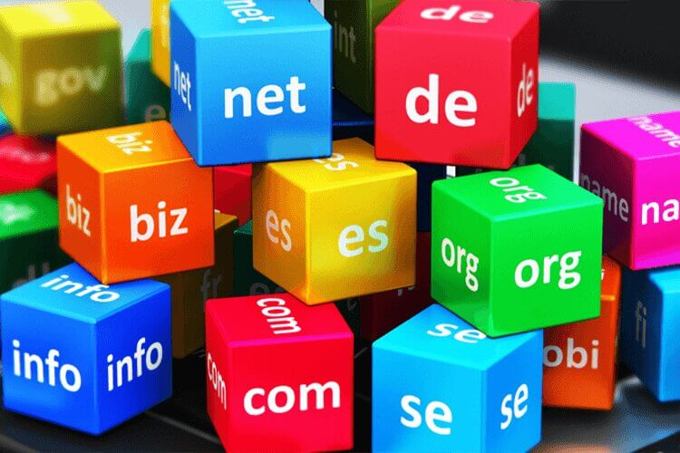 Hosting & Domain Names